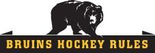 Bruins Hockey Rules